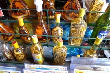 ニャチャングロ酒.JPG