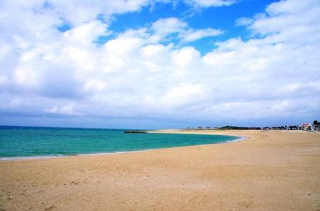 2011-12-8ビーチ.jpg