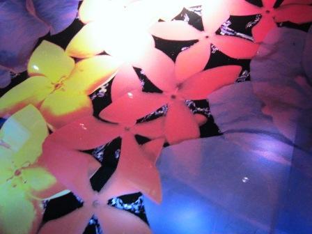 2011-3-アンコール&タイ-2 037.jpg