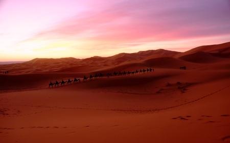 2012-3-サハラ砂漠 020.jpg