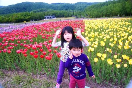 2012-6-8滝野自然公園.jpg