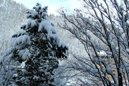 定山渓雪景色01.JPGのサムネール画像